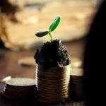 Blog übers Geld sparen - Warum gibt es das Sparhörnchen?
